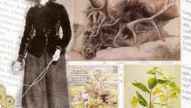 Beatrix Potter e le sue fantastiche creature