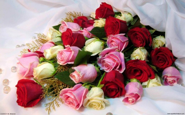 13625_rose_bouquet_w_1920x1200