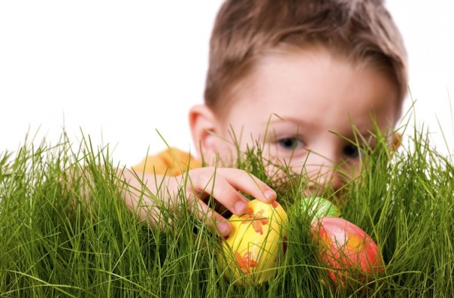 caccia alle uova