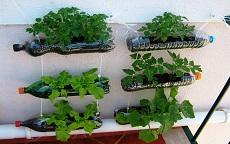 riciclo creativo per l'orto sul balcone