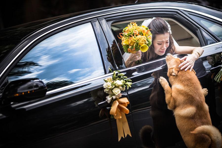 Foto di nozze mozzafiato
